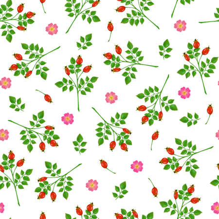Seamless pattern with dog-rose flowers, rosehip and branches on white background
