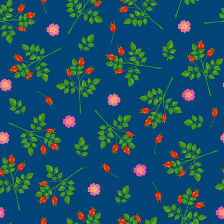 Seamless pattern with wild rose flowers, rosehip and branches on blue background Stock Photo