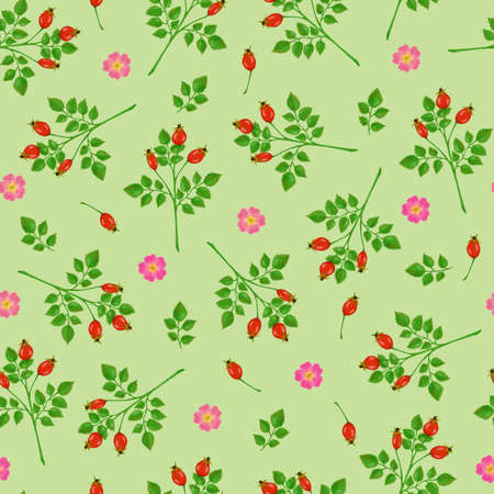 Seamless pattern with rose hip, roses and green branches on light green background Stockfoto