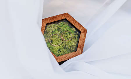 Two wedding rings in a wooden box with a moss plant on a white background with veil Stockfoto