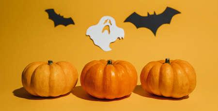 Fresh ripe pumpkin on orange background. Space with bats and ghost Halloween concept 版權商用圖片