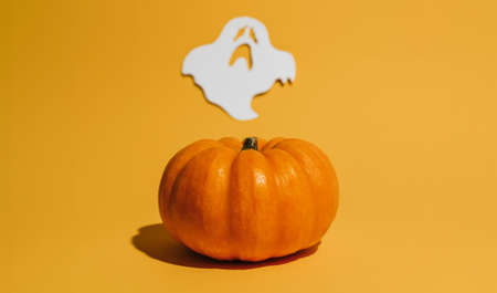 Fresh ripe pumpkin on orange background. Space with ghost Halloween concept 版權商用圖片