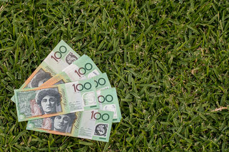 Australian dollars 100 banknotes on green grass background. Finance and payment concept.