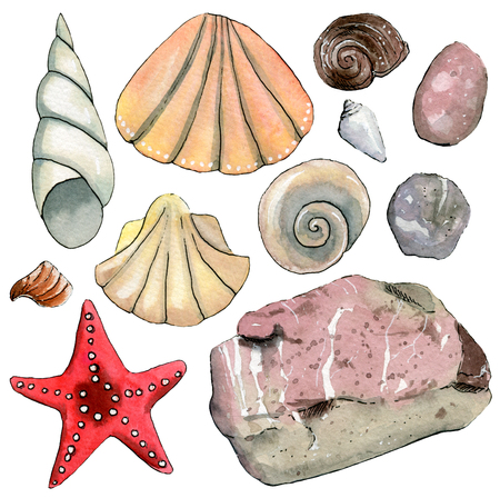 Set of travel  hand drawn watercolor elements with sea shells, starfish, stones. Stock Photo
