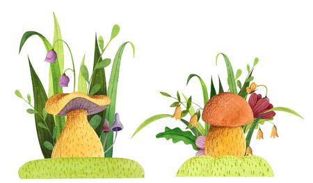 Set of mushrooms with grass, flowers, butterfly, leaves. Watercolor and colored pencil illustration.