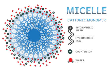 ions: Cationic micelle infographics - layer of charged monomers, counter ions and water molecules.