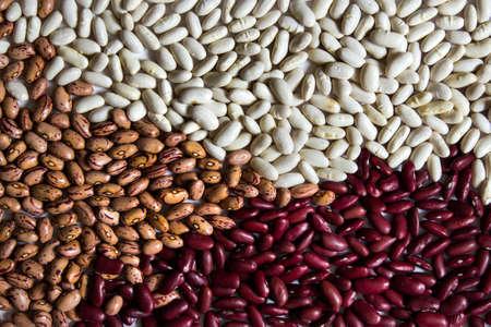 別の豆 - 小さな白い kiney 豆、レッドキドニービーンズ、クランベリーの茶色型豆。