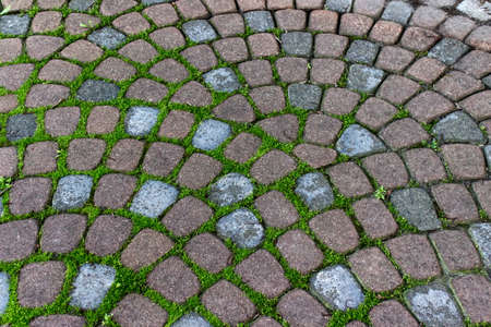 Attirant Decorative Garden Pavement Tiles With Grass Growing In Grooves. Stock Photo    83363709