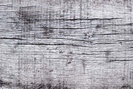 Wooden texture with white pain on the surface with cracks. Reklamní fotografie
