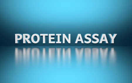 Word Protein Assay written in large bold white letters and placed on blue background over reflective surface. 3d illustration.