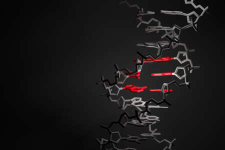 Scientific concept DNA strand with highlighted gene red region on black background. Image with copy blank space. 3d illustration. Reklamní fotografie