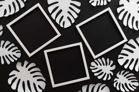 Flat lay with three white empty frames and white paper handmade tropical plant Monstera leaves on black background.