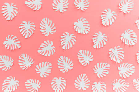 Pattern with many handmade paper cut tropical plant Monstera leaves on bright pink background.