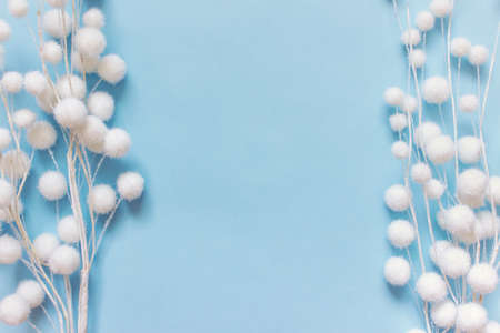Festive winter background with flat lay of two white decorative artificial plant branches on blue background. Photo with copy blank space. Reklamní fotografie