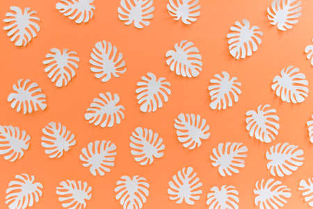 Pattern with many handmade paper cut tropical plant Monstera leaves on bright orange background. Reklamní fotografie