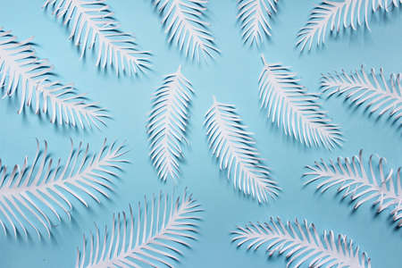 Pattern made of white paper handmade white spiky tropical plant leaves feathears arranged on blue background.