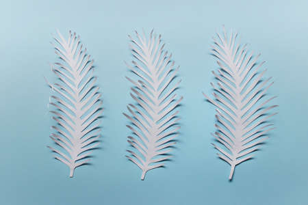 Three white hand cut paper spiky feathers leaves on blue background.