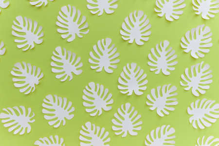 Pattern with many handmade paper cut tropical plant Monstera leaves on bright green background.