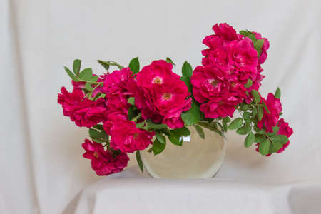 Bouquet of wild tea roses in ball glass vase standing on the background of falling white cloth.