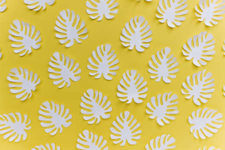 Pattern with many handmade paper cut tropical plant Monstera leaves on bright yellow background.