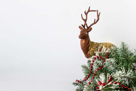 Front view of Christmas composition with reindeer, Christmas tree evergreen decorated with red garland on white background. Photo with copy blank space.