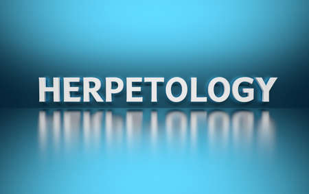 Word Herpetology written in bold white letters on blue reflective background. 3d illustration.