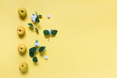 Simple autumnal botanical composition layout with wild apples and berries on yellow background. Photo with copy blank space.