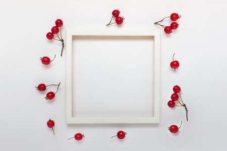 White picture photo frame mockup with copy blank empty space and red winter autumn berries on white backgound. Фото со стока