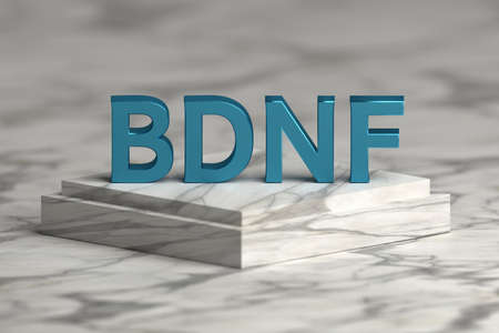 Abbreviation BDNF standing for Brain-derived neurotrophic factor in bold blue letters standing on marble pedestal. 3d illustration.