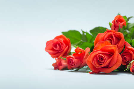 Simple Valentine day greeting card with bouquet of roses on white background. Photo with copy blank space.