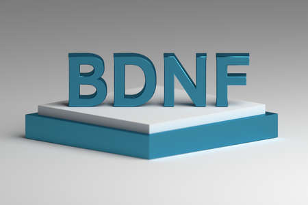 Abbreviation BDNF standing for Brain-derived neurotrophic factor in bold blue letters standing on white blue pedestal. 3d illustration. Stock Photo