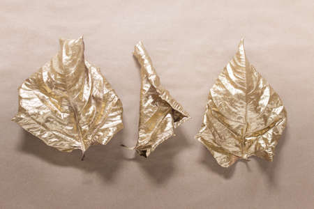 Yellow golden dry wrapped rolled autumn leaves on craft paper background. 免版税图像
