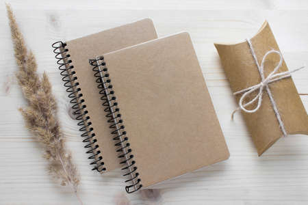 Mockup composition with two spiral notebooks with kraft paper covers, gift present and fluffy dry plant o n white background.