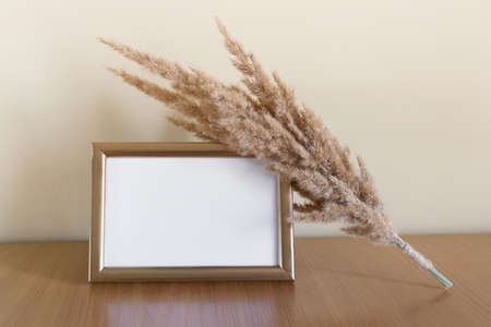 Golden frame with blank empty space and dry fluffy field plant decorative bouquet.
