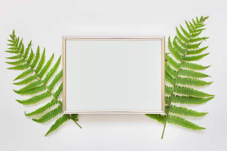 Horizontal A4 silver frame with two green fern leaves on white background.