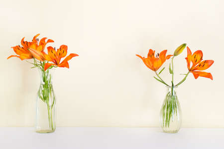 Two vases with orange lily plant flowers in glass vases standing on white surface with blank yellow wall. 免版税图像