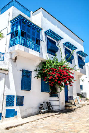 A red rose with white doors and windows. Sidi Bou Said. Tunisia. Reklamní fotografie