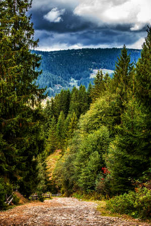 A winding path among the mountains. Carpathians. Ukraine.