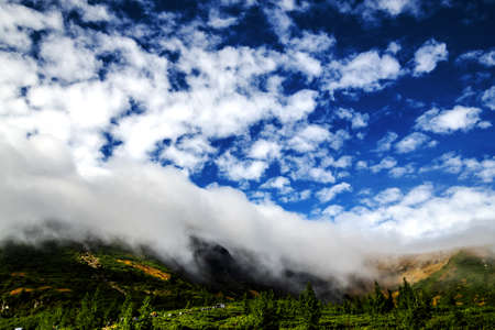 A cloud, like an avalanche coming down from the mountains. Carpathians. Ukraine.