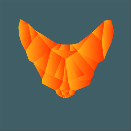 snout: Polygonal orange snout fox