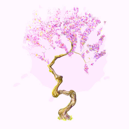 traditionally chinese: A isolated beautiful watercolor cherry tree