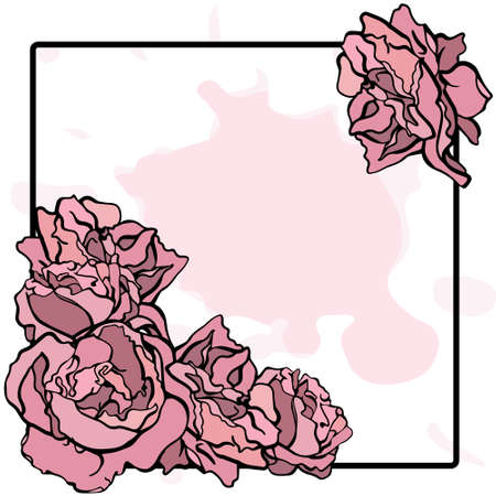 peony black: Vector pink peony on a black frame Illustration