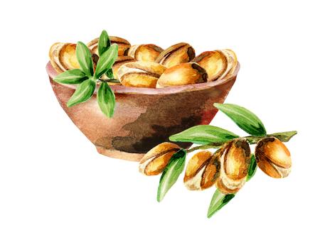 Schüssel mit Argan Samen kann für die Dekoration von kosmetischen oder Lebensmittelprodukten mit Arganöl als Gestaltungselement verwendet werden. Von Hand gezeichnet Aquarellskizze Standard-Bild - 74556476