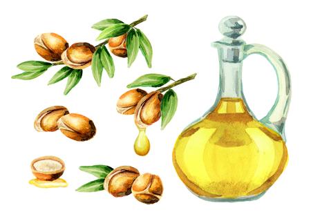 Ensemble aquarelle dessiné à la main de l'huile d'argan et une branche de noix. Peut être utilisé comme éléments pour la conception de cartes postales, de livrets, de dépliants, de bannières ou de flyers, de produits cosmétiques ou alimentaires Banque d'images - 74565435