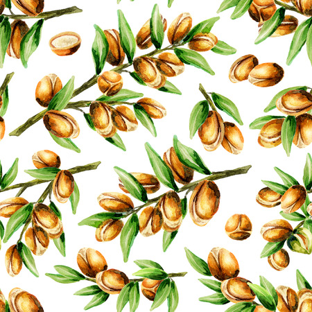 Seamless pattern of hand drawn watercolor argan nuts. Can be used as a print for wrapping paper, textile, background for your design
