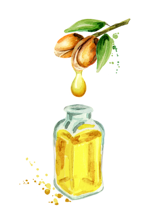 Natural Argan oil.Hand drawn watercolor