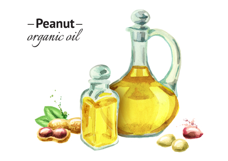 Peanut eco oil. Watercolor