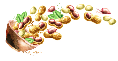 Bowl with peanuts. Hand drawn horisontal watercolor