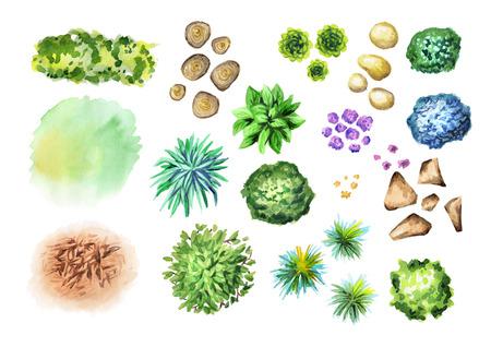 大きな手は、庭の植物のセットを描画されます。ランドス ケープ デザインの要素です。水彩 写真素材
