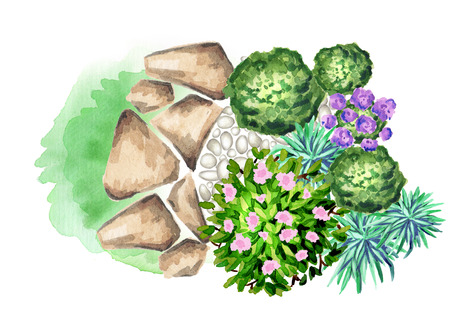 Garden flowers. Element of landscape design. Watercolor